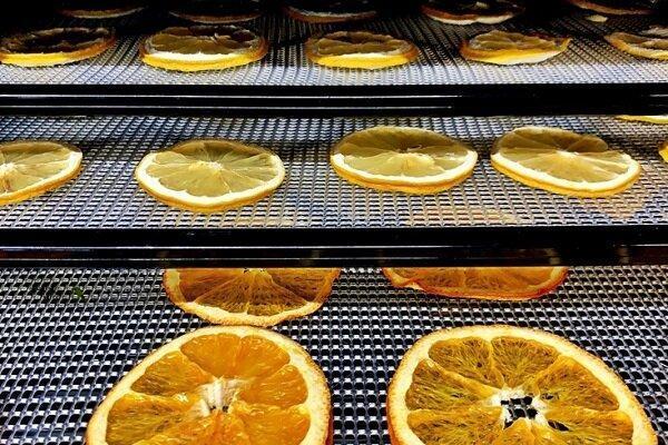باد یونی صنعت خشک کردن میوه را متحول می کند